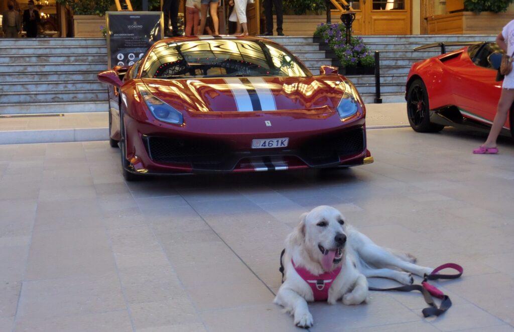 Největší frajer se fotí před Ferrari.
